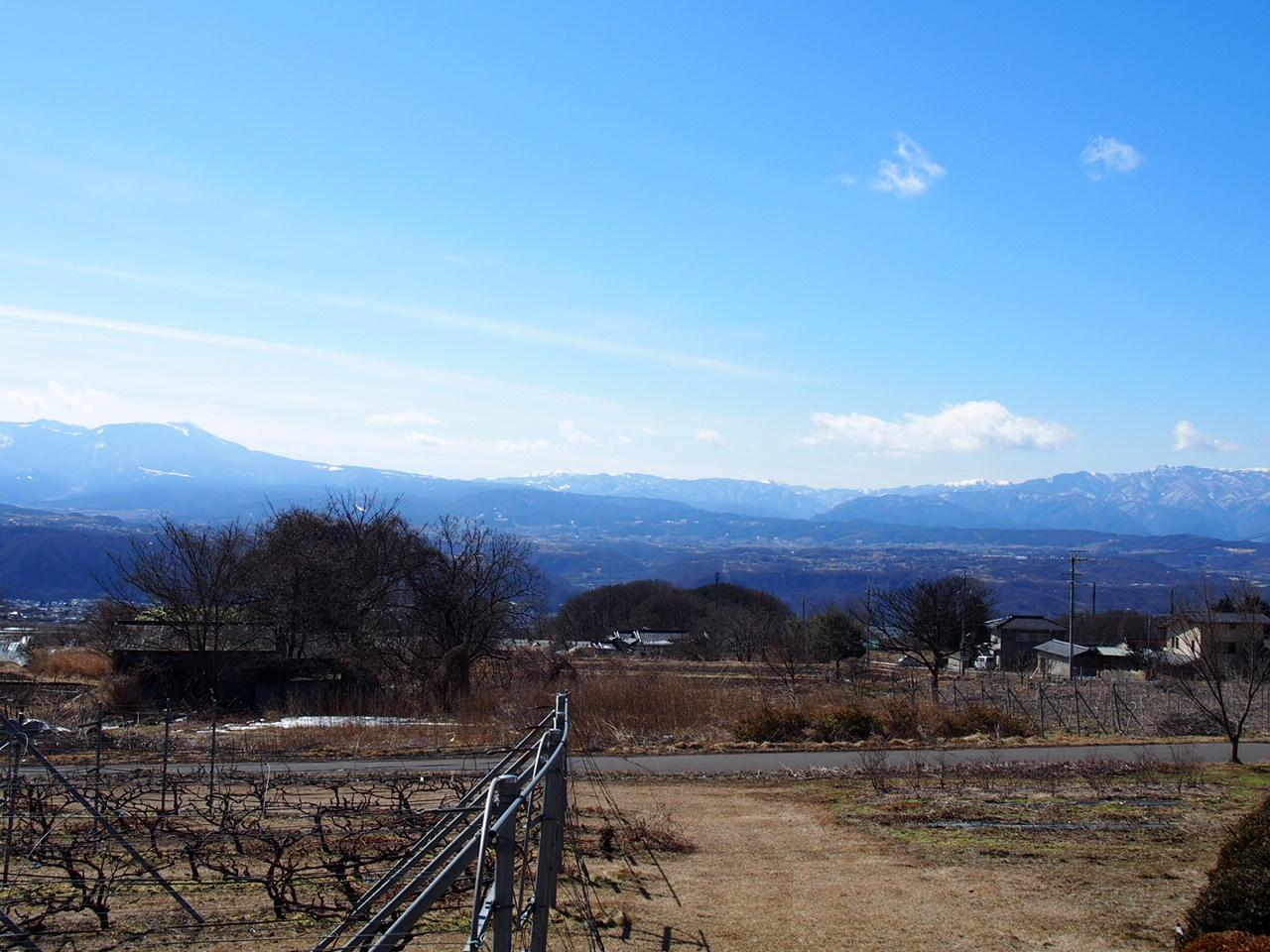 ブドウ棚と八ヶ岳